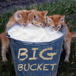Logo of BigBucket